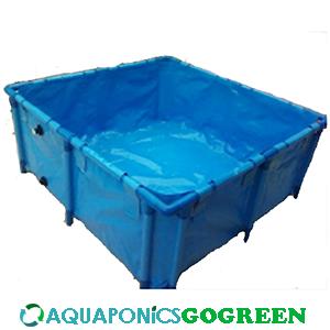 rectangular tank Archives - AquaponicsGoGreen