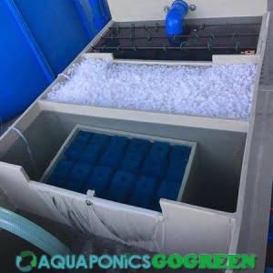 Aquaponics Filter